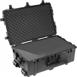 Pelican 1650 Large Case...